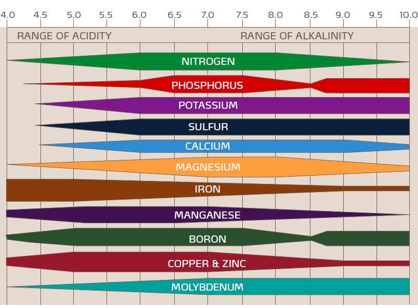 Химични елементи при почвени анализи